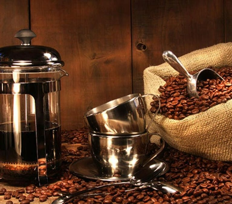 Guide to the best french press!