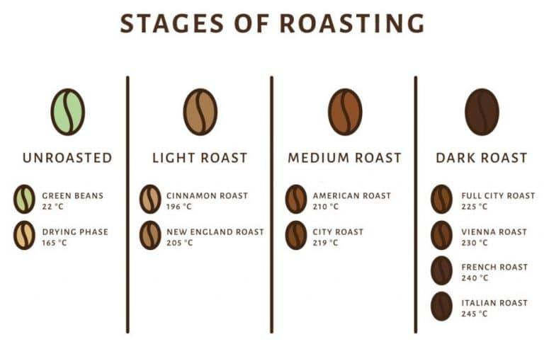 coffee beans stages of roasting
