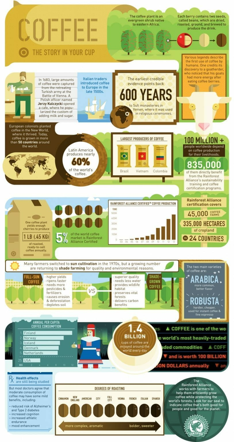 coffee info en scaled scaled