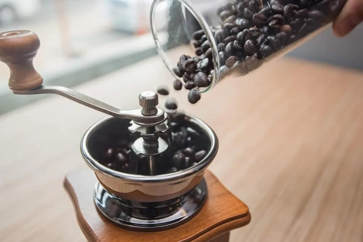 Coffee Grinder Purchase Guide