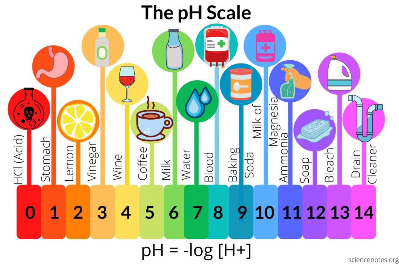 coffee ph coffee scale