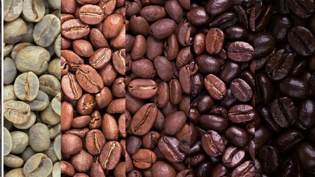 Coffee Roasting Grades