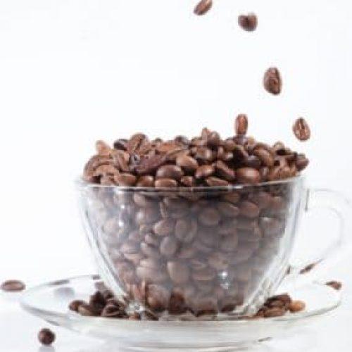 bean quality