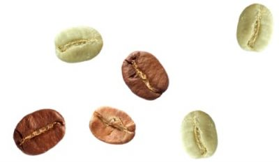 Single Coffee Bean Png 2